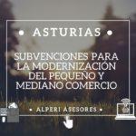 Subvención para la modernización del pequeño y mediano comercio (Asturias)