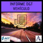 Informe de un vehículo